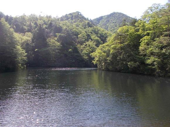 弁天池も山の緑を映しています