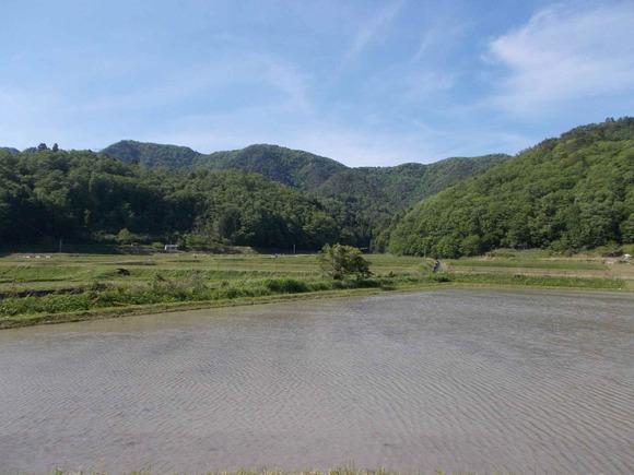 雨石連山。中央が雨石山です。手前の水田はまだ田植え前。