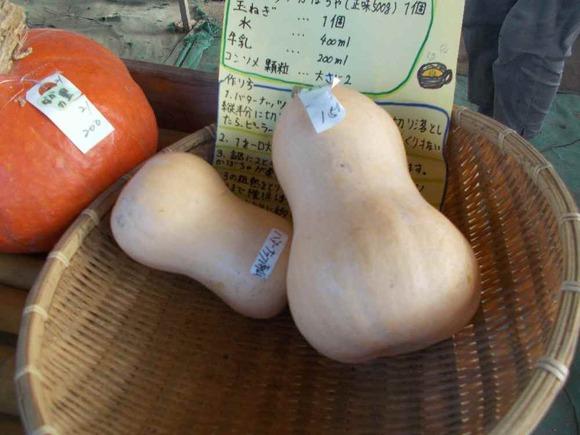 バターナッツかぼちゃ。瓢箪みたいです。