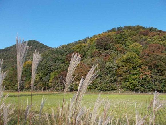 山々の紅葉は着実に進んできています。