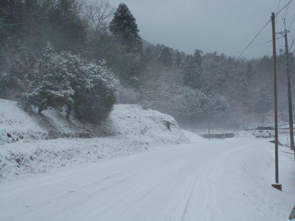 大芋地区では最も積雪量が多いのが藤坂集落です。