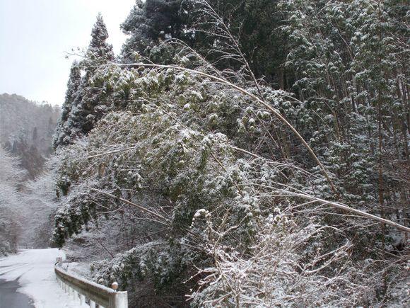 まだこの程度ですが、降雪量が多い時には車も通りにくくなります。