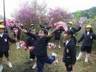 丸山公園 (つつじ公園)