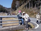 今日が最終日−丹波篠山ひなまつり