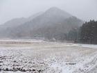 この冬初めての本格的な雪