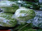冬野菜がいっぱい!