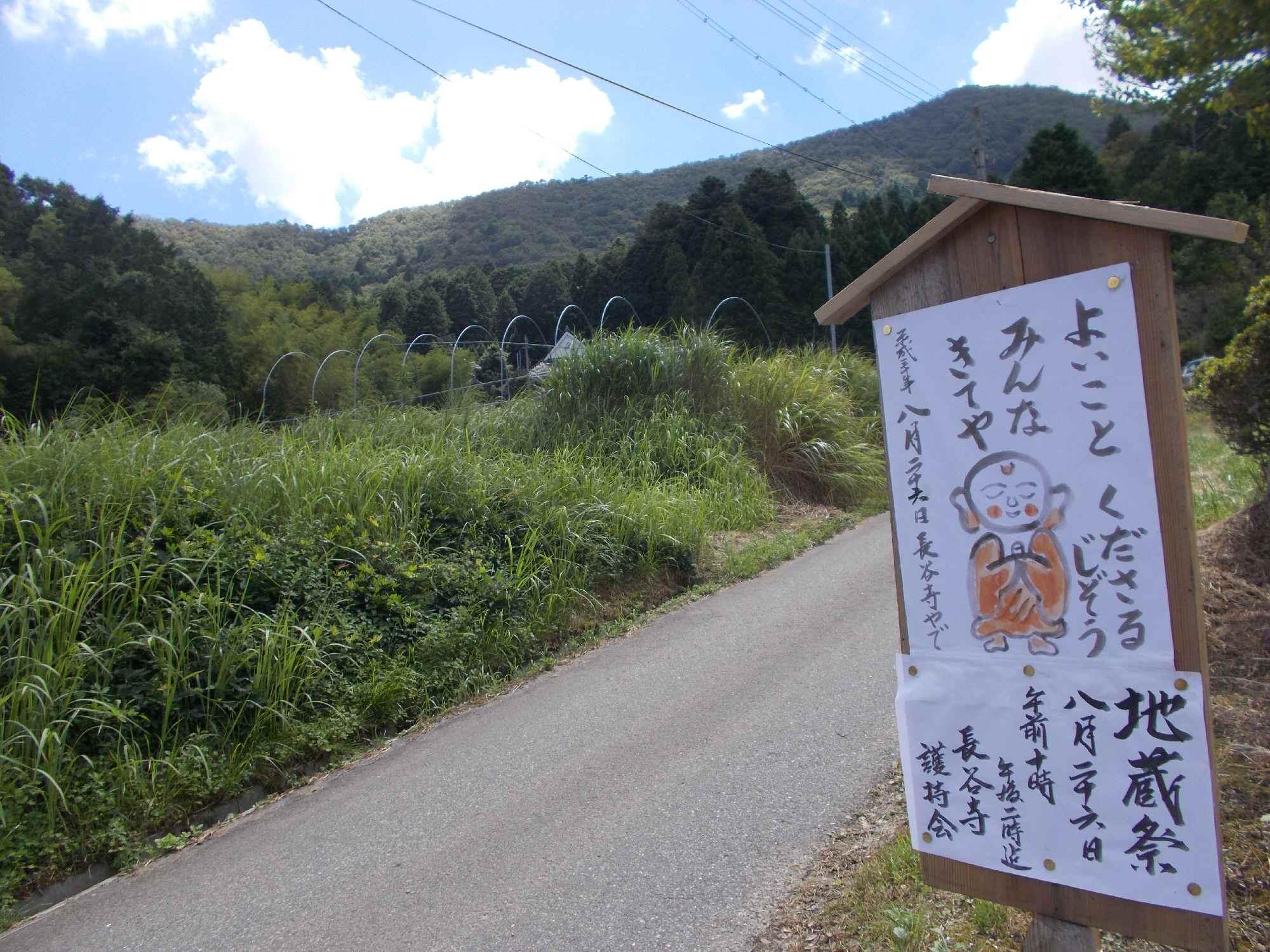 長谷寺は上方に見えます。