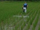 人と自然に優しい農法は・・・・・